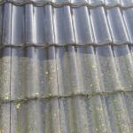 czyszczenie dachu, mycia dachówki