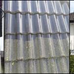 toruń bydgoszcz mycie elewacji i dachu